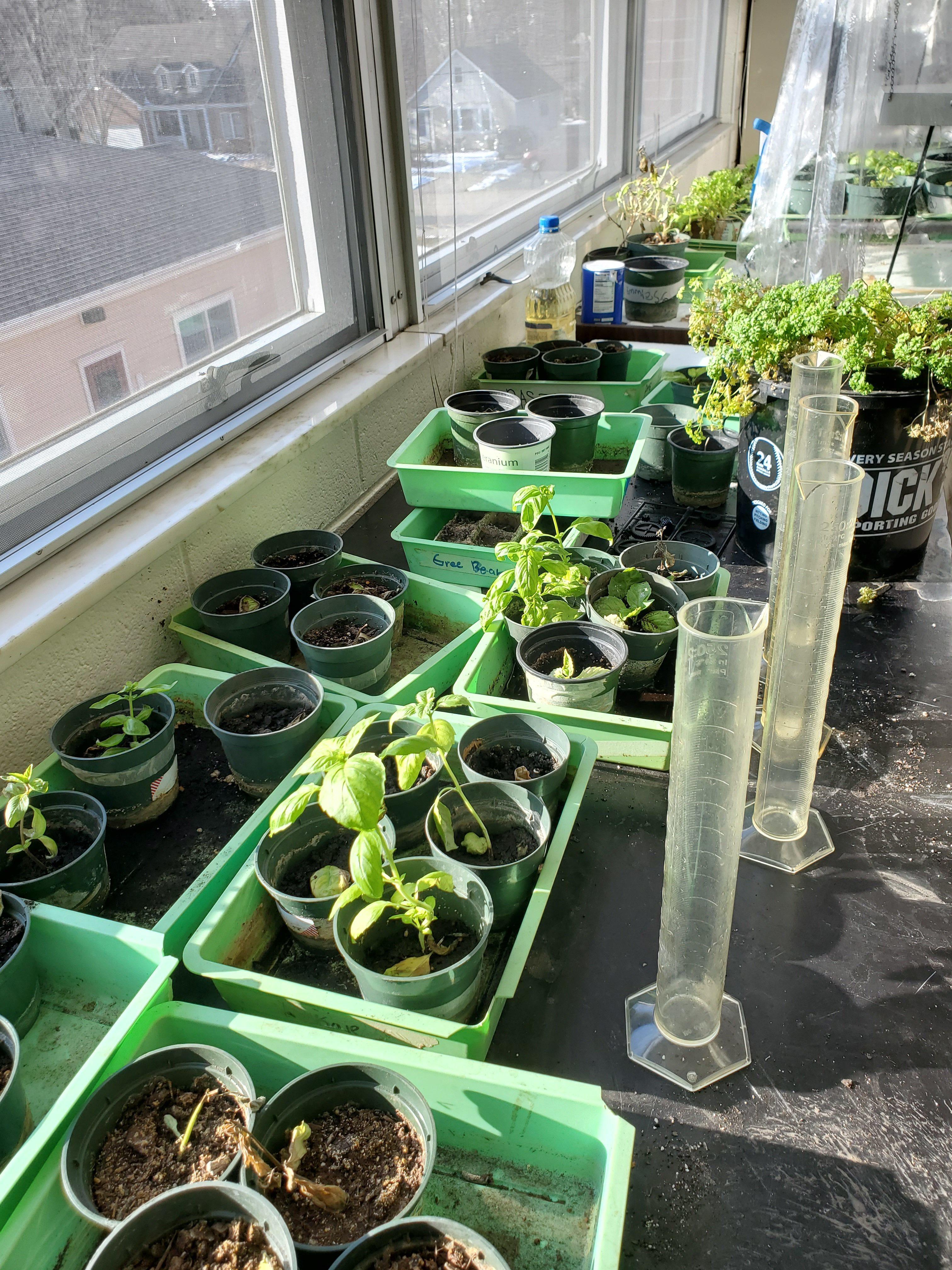 Earth Stewardship Project Story Pic 8 Greg Reiva